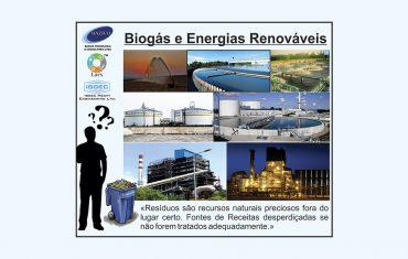 BIOGÁS E ENERGIA RENOVÁVEL